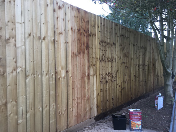 A feather edge timber fence painted with Barrettine Clear Wood Protective Treatment