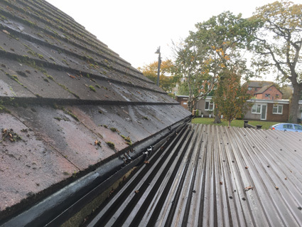 Rainwater gutters on garage roof cleared of mud, leaves, debris and weeds