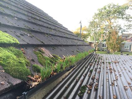 Rainwater gutters on garage roof blocked with mud, leaves, debris and weeds